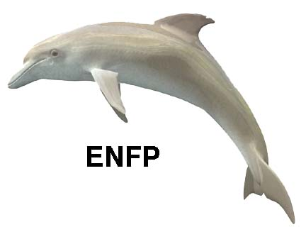 enfp-dolphin